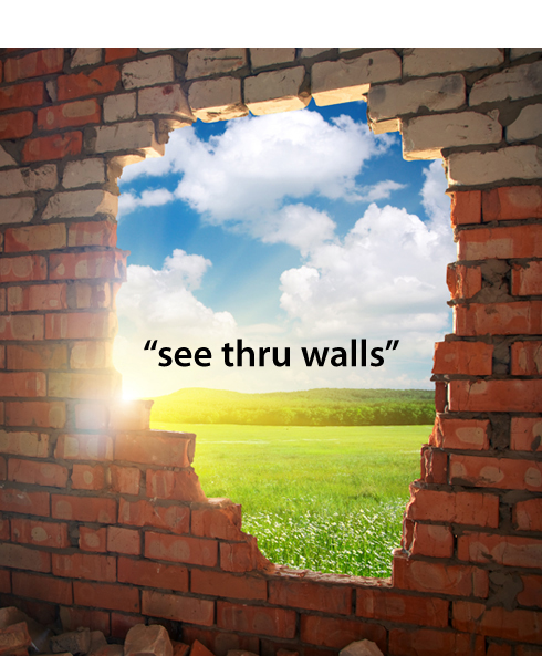 See Through Walls